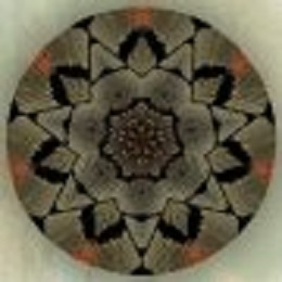 2013 MAY 15 CROP 260 mandala-61
