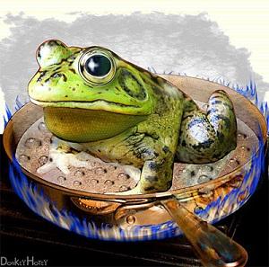 2014 apr 13 luộc ếch300