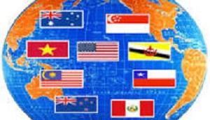 2015 FEB 10 TPP 300