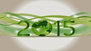 2015 FEB 11 HNY 2.300
