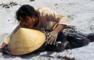 Mậu Thân Huế – Nguyễn Thị Thái Hòa: Nhân Chứng Sống