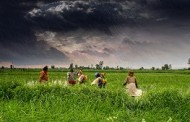Beware the Green Revolution --- Hãy Cẩn Thận Với Cách Mạng Xanh