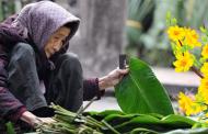 Thiên Lý: Mẹ và Mùa Xuân