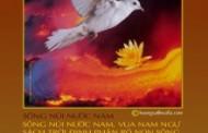 Nguyễn Hữu Nhật: Bộ Tranh Bích Chương