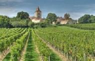 Chuyện dài Kỹ Nghệ Thức Uống --- Bài 4 :  Giới Thiệu Rượu Bordeaux-Le Bordeaux
