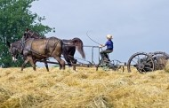 Financial Secrets of the Amish
