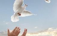 Nguyễn Hữu Nhật: Người Tù Già Kể Chuyện Mình