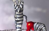 Babui: Tự Do, Dân Chủ, Nhân Quyền cho Việt Nam