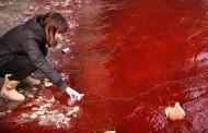 Nạn Ô Nhiễm Tại Trung Hoa: Văn Hoá [Hoạ] Giết Người