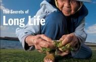 Câu Chuyện Thời Đại:  Giấc Mơ Sống Trên 100 Tuổi