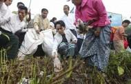 Việt Nam Có Thể Theo Myanmar Được Không?